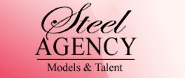 Steel Agency Logo